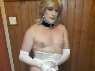 Revealed SISSY homo